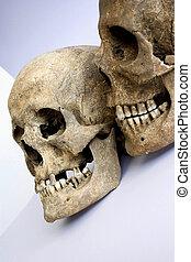 par, cráneos