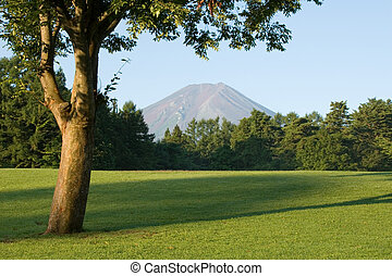Par Five - A golf course, Japanese style.