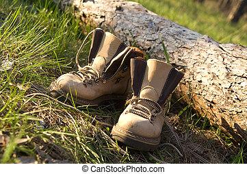 par, floresta, botas, trekking