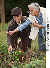 par, jardinagem, idoso