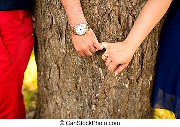 par jovem, segurar passa, contra, árvores, parque
