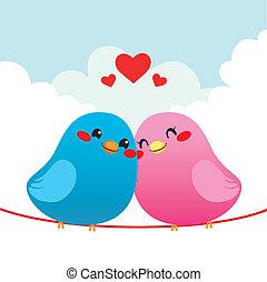 par, pássaro, amando