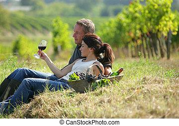 par, provando, vinho, em, um, vinhedo