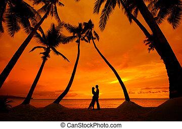 par romântico, árvores, tropicais, palma, fundo, beijando, praia, pôr do sol