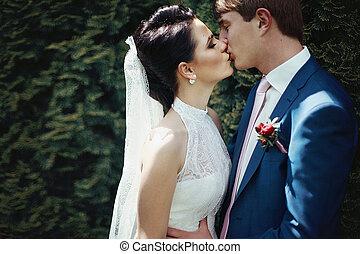 par romântico, parque, abraçando, closeup, beijando, recém casado