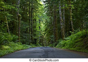 par, route, profond, forêt