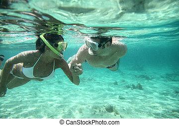 par, snorkeling, em, caraíbas, águas