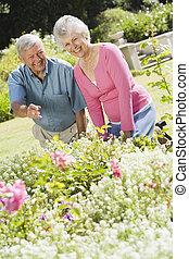 par velho, jardim, trabalhando