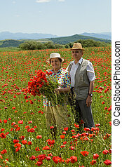 par velho, ligado, a, flor, campo