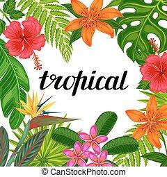 paraíso tropical, cartão, com, stylized, folhas, e, flowers., imagem, para, anunciando, booklets, bandeiras, voadores