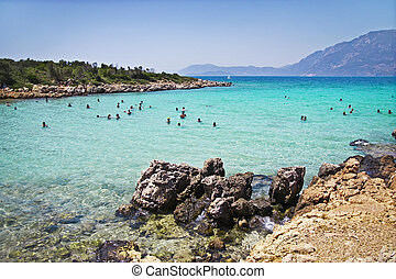 paraíso tropical, ilha