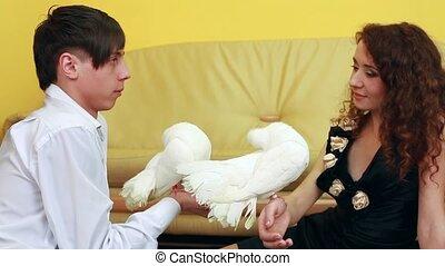 para, biały, młody, gołębice