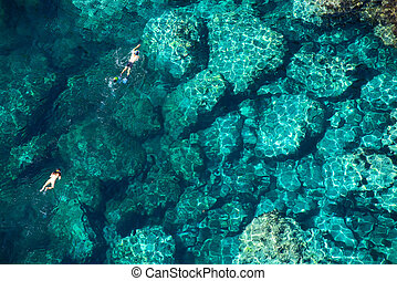para, tropikalny, truteń, morze, snorkeling, prospekt