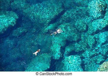 para, truteń, snorkeling, prospekt morza