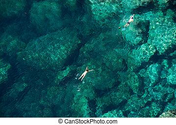 para, woda, truteń, morze, snorkeling, prospekt