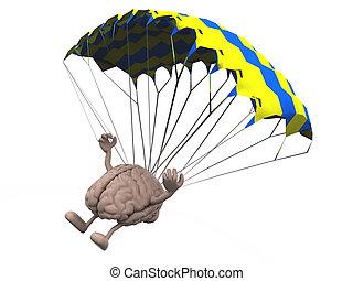paracaídas, cerebro, aterrizaje