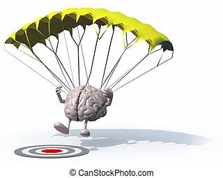 parachute, cerveau, cible, atterrissage