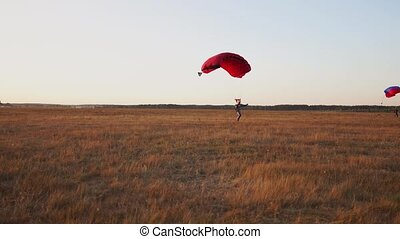 Parachutist lands in the field after disembarking from the...