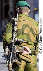 parada militar, noruega, oslo