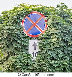 parada, vermelho, árvores, sinal