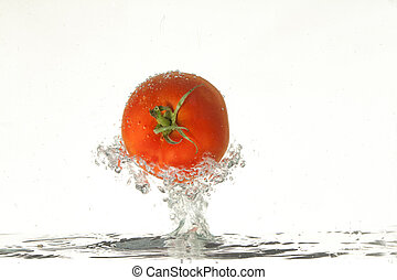 paradicsom, a vízben