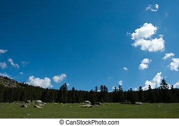 paradies, mongolia, 自然