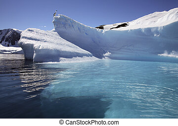 Paradise Bay - Antarctic Peninsula - Antarctica