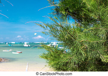 Paradise beach on a tropical Bali island, Indonesia.