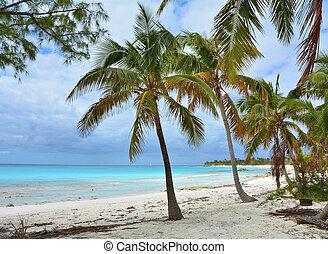 Paradise beach on Eleuthera island