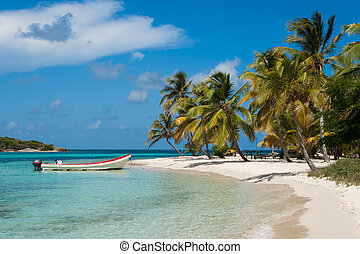 Beach on Tobago Cays - St. Vincent e Grenadines