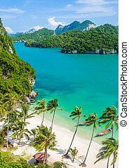 Paradise beach on tropical island. Top view