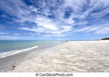 Paradise beach - Tamandare beach in Brazil