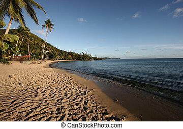 Paradise carribean beach
