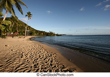 Paradise carribean beach under a smooth light - Martinique ...