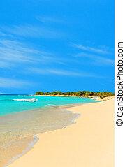 Paradise - empty tropical beach