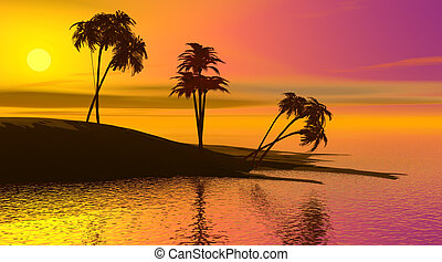 Paradise island by sunset - Shadows of palmtrees on a island...