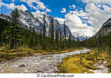 Paradise Valley and Mount Temple in Banff