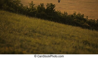 Paraglider in the sky over the steppe. - Flying paraglider...