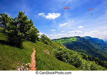 Paragliding in the blue sky in summer