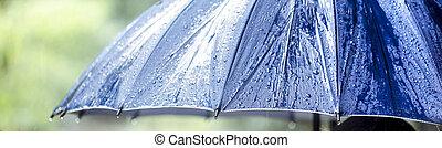 paraguas, primer plano, mojado