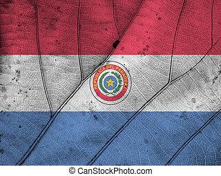 Paraguay flag leaf texture