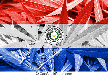 Paraguay Flag on cannabis background. Drug policy....