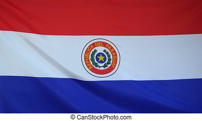 Paraguay Flag real fabric close up - Textile flag of...