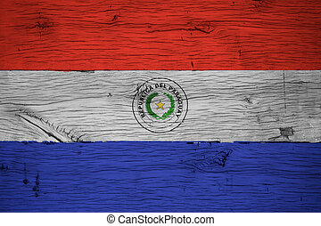 Paraguay national flag painted old oak wood