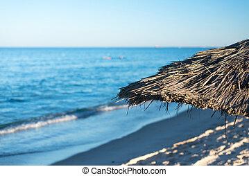 parapluie, (3), plage, naturel