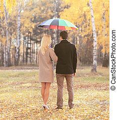 parapluie, couple, jeune, ensemble, dos, automne, parc, heureux, vue