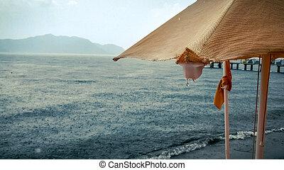 parapluie, gouttelettes, image, parasol, pluie, closeup, mer, plage