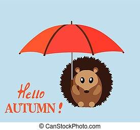 parapluie, hérisson