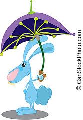 parapluie, lapin