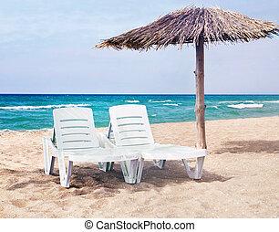 paraply, hav, två, blomsterbädd, ren, strand
